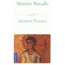 Moïse et Pharaon. Les Hébreux en Egypte, Quelles concordances des Livres saints avec l'Histoire ?